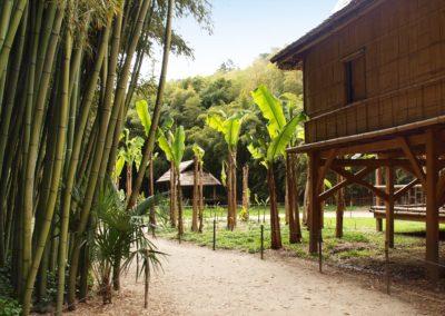 La bambouseraie à Générargues